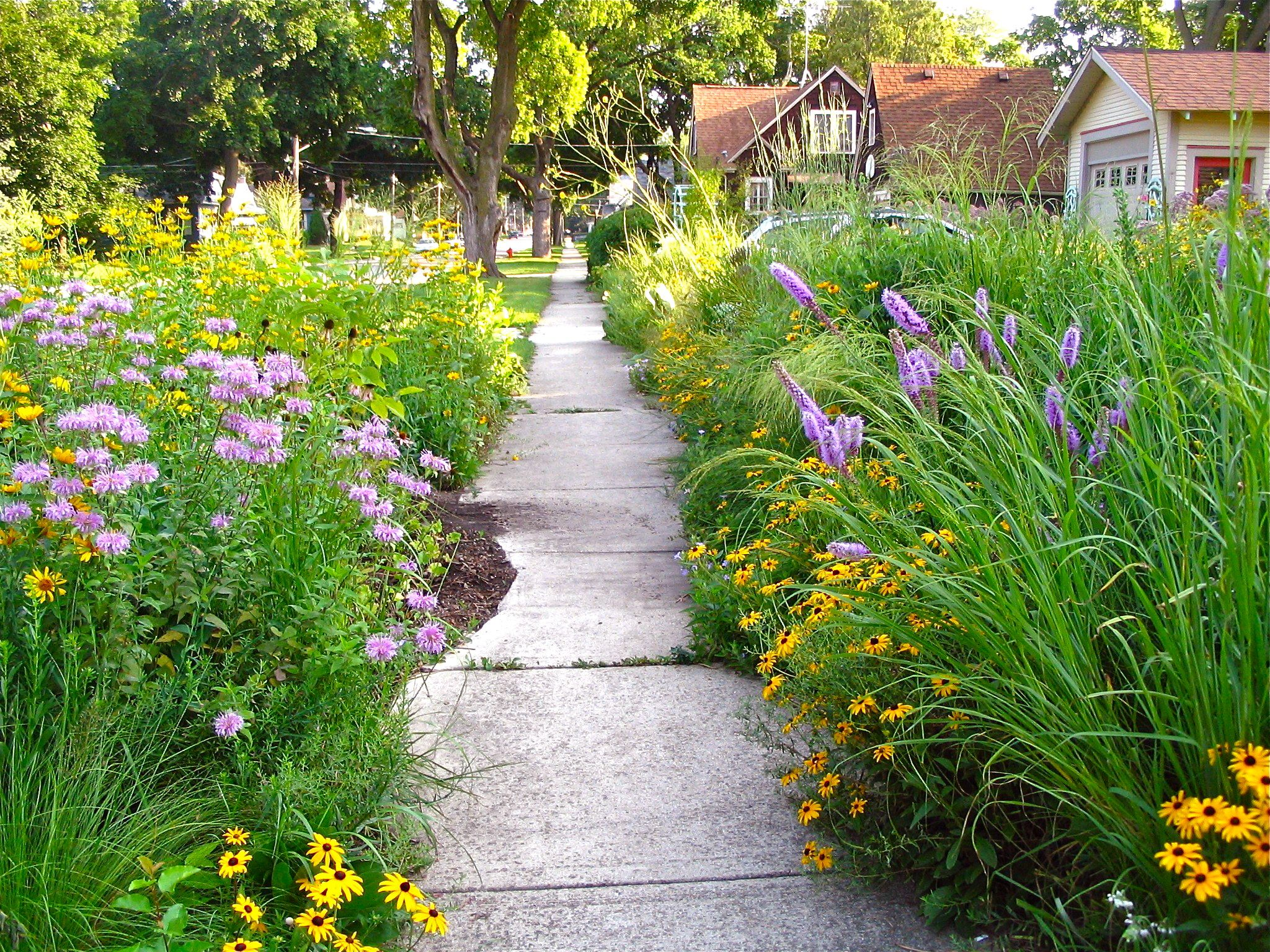 Pin by mary klees on curb appeal pinterest for Garden design midwest