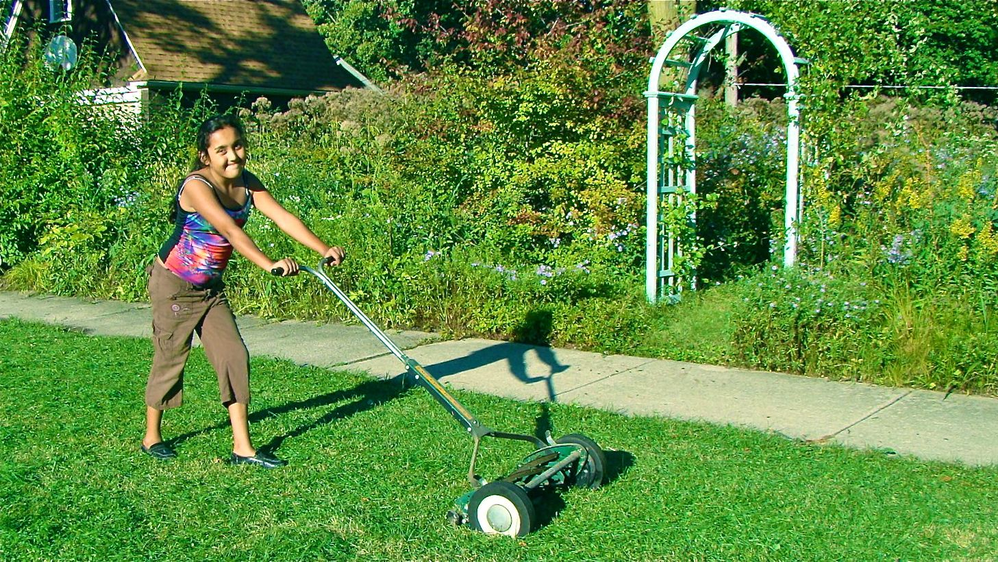 Have you ever used a non-motorized lawn mower? - Page 2 - Lawn