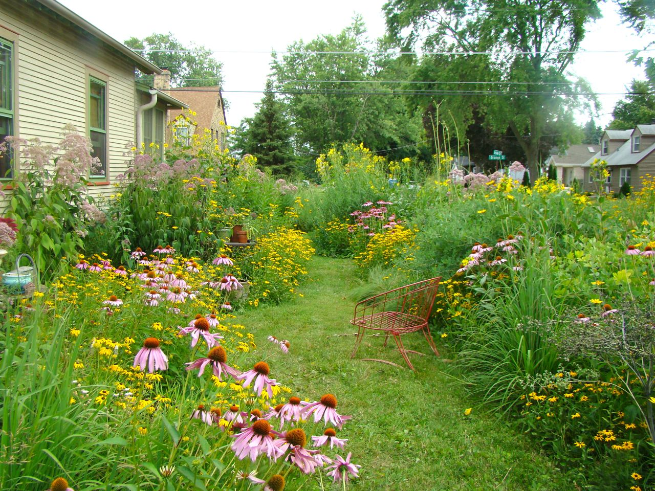 Why Plant Native Plants?   Natural Midwest Garden