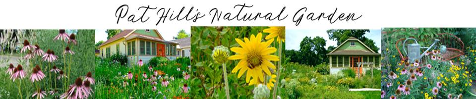 Natural Midwest Garden